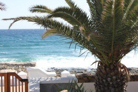 Meer und Palme und Gartentor