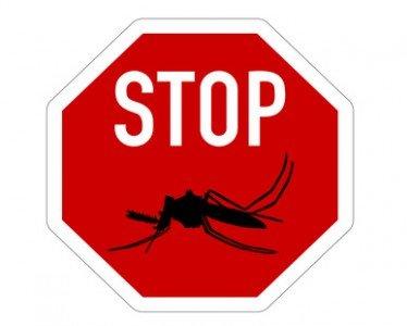 Mücken, nein danke