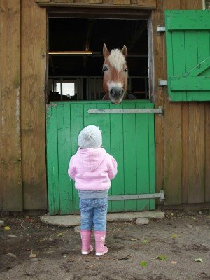 Hallo Pferdchen © kruemel86