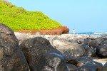 Nordküste bei Paia © Aloha