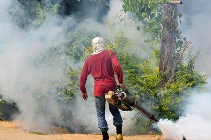 Die Malaria-Überträger werden in vielen Ländern regelmäßig bekämpft © anankkml - Fotolia.com