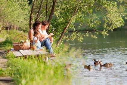Der ADAC warnt: Enten füttern kann die Wasserqualität verschlechtern