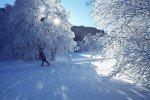 Wunderschöne Winterlandschaften © Familienhotel Botenwirt