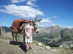Mit dem Esel als Freund auf Wandertour