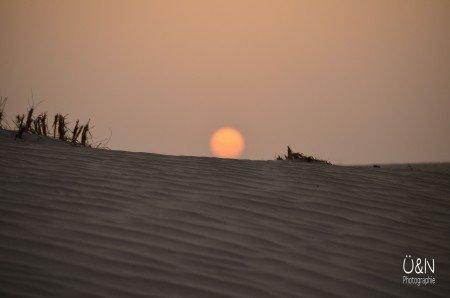 Abends in der Wüste - wenn die Temperaturen erträglich werden © Überall und Nirgendwo