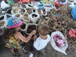Die Reisehasen auf dem local market auf Sumatra