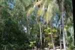 Blick aus dem Palm Bungalow auf Hamilton Island © missbubi