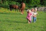 Ferien auf dem Bauernhof © Fotolia