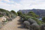 Wandern auf der Dracheninsel © ggrosser
