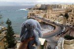 St. Juliens - Malta © Annile84