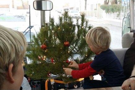 Maxi schmückt den Weihnachtsbaum