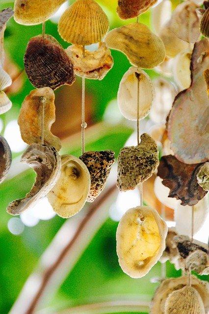 Klangvoll und schön: ein Windspiel aus Muscheln © Pixabay