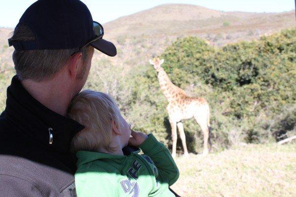 Kind in Südafrika auf Safari mit Giraffe