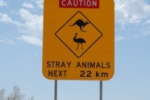 Achtung - Kängurus und Strauße kreuzen © Elternzeitreise