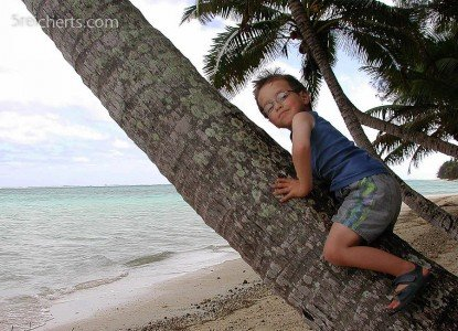 Noah fand die Palmen auf Rarotonga besonders gut © Gabi Reichert