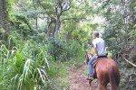 Westernreittour Ironwood-Ranch © Aloha