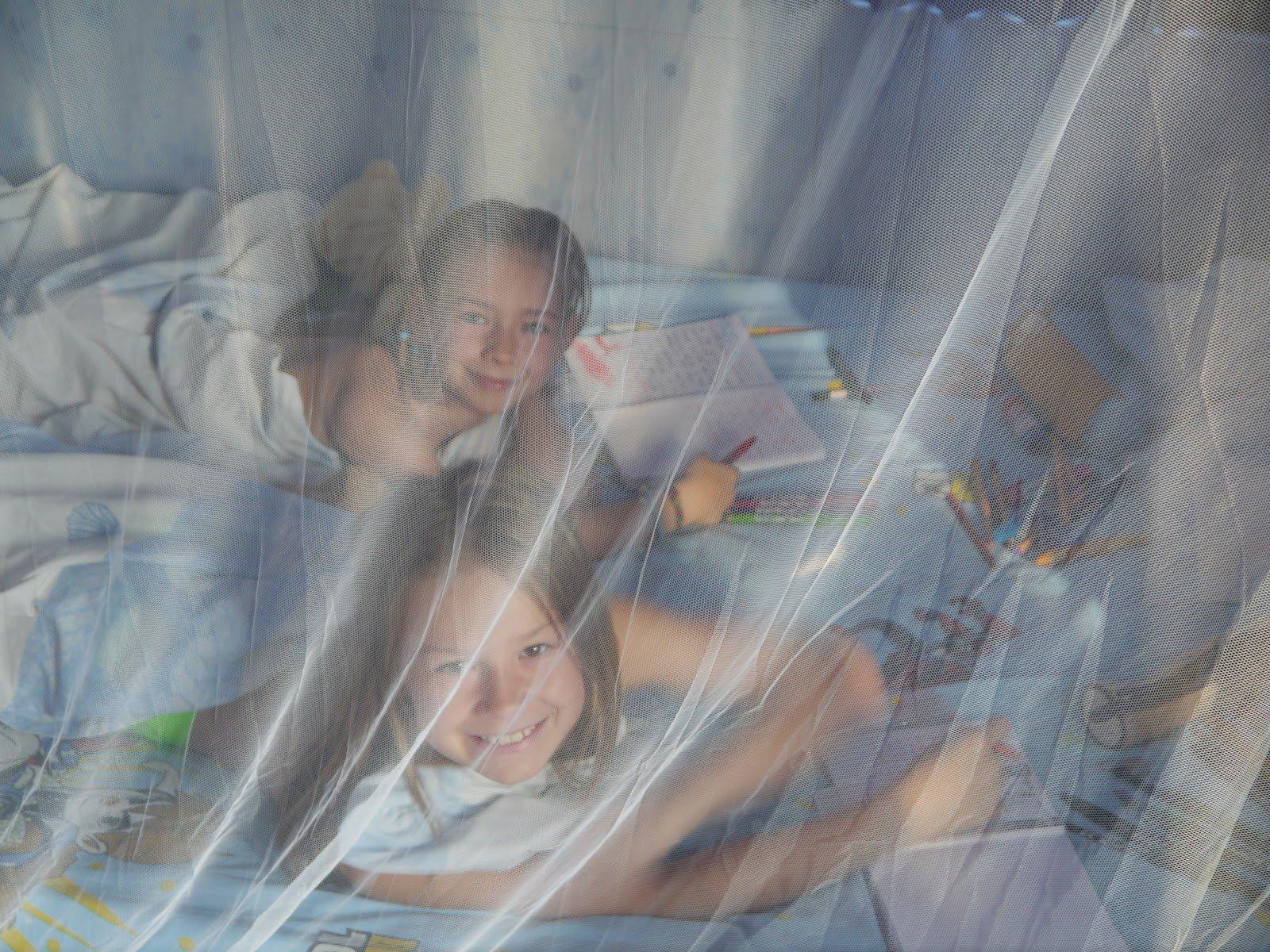 Vorbildlich: Jill und Joya lernen mit Mückenschutz © LDJJ
