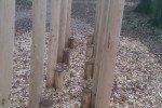 Der Waldlehr- und Erlebnispfad: Die Stelzen © Carolin