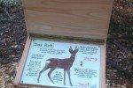 Der Waldlehr- und Erlebnispfad: Erkärungstafel © Carolin