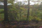 Schöne Wälder © Carolin