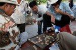 Straßenleben in Hanoi - hier wird Chinesisches Schach gespielt © Jenny