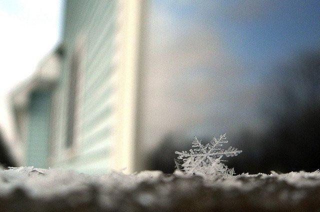Schneeflocken erforschen ist ungeheuer spannend - auch für Eltern © Flickr/CaptPiper