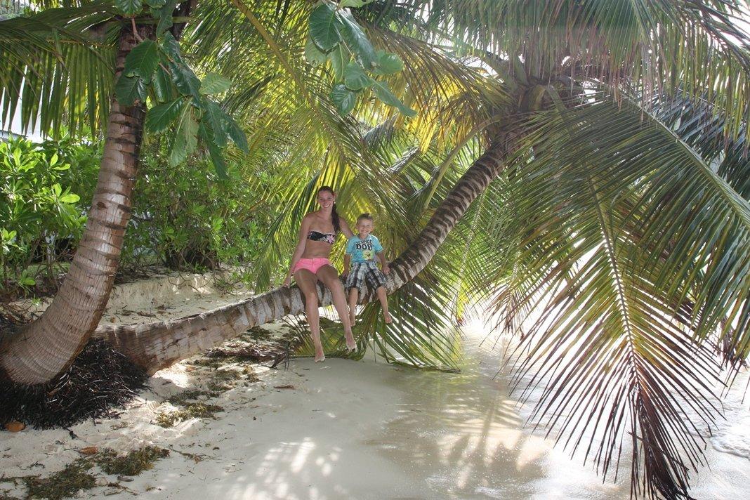 Tropenparadies mit Palmen - die Seychellen halten Wort © www.flind.de