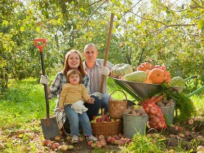 Wwoofen - auch für Familien mit Kind möglich. © JackF - Fotolia.de