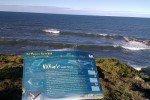 Whale Watching Port Macquarie © missbubi