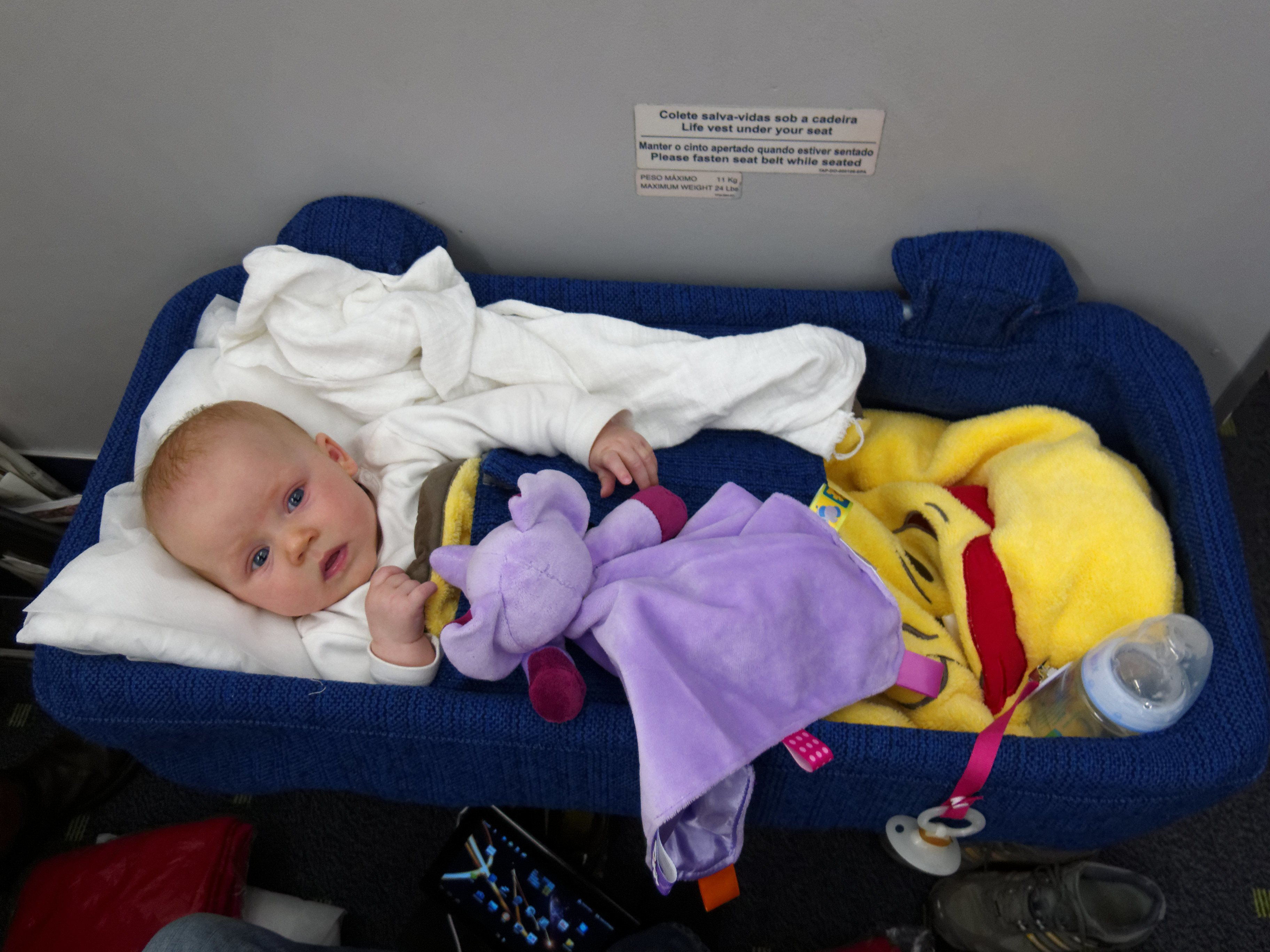 Baby fliegen First Class nach Florida.... © Elke76