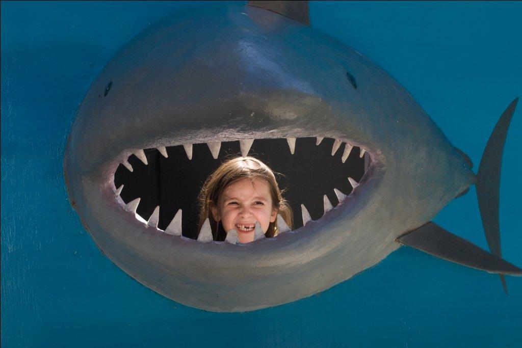 Vom Hai gefressen wird wohl kaum ein Kind auf Reisen © Weltwunderer
