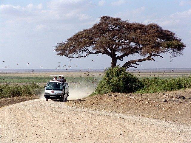 Eine Safari ist ein tolles Erlebnis, auch für Kinder © Pixabay