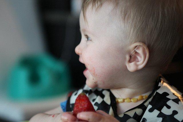 Baby led weaning auf Reisen © Flickr/Gail