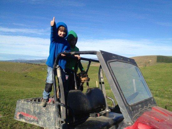 4 in Neuseeland auf der Farm © Annette Gref
