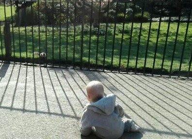 Tinas Reisebaby erkundet den Hyde Park in London © mamawelten