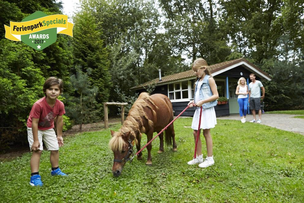 Pony reiten im Ferienpark Slagharen © FerienparkSpecials