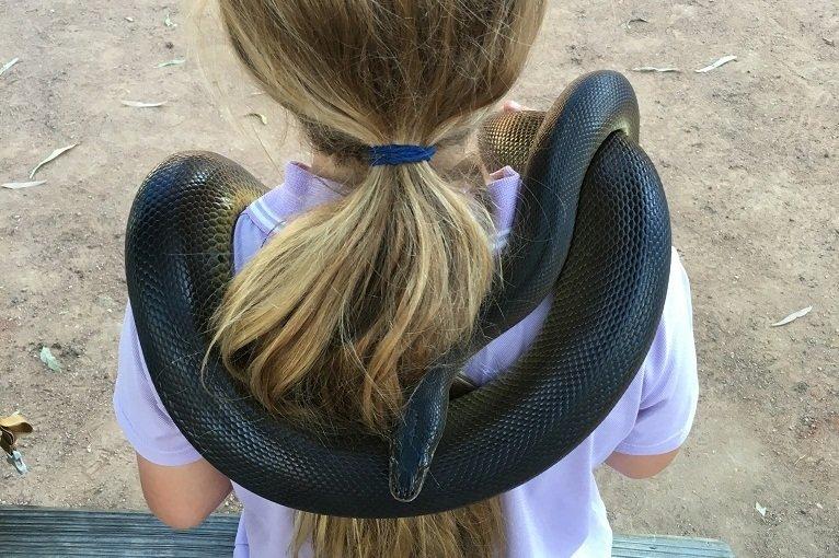 Biologieunterricht in Australien © Vero